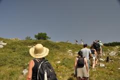 Monte San Vito 2012